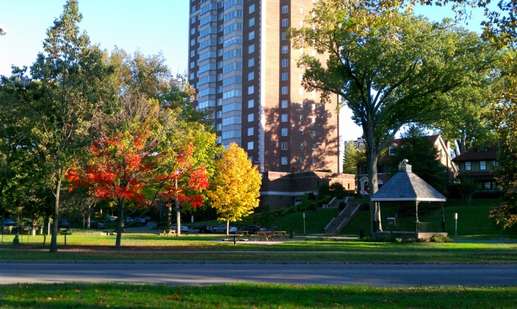Willow Park in the Fall