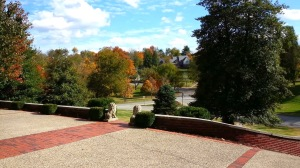 Cherokee Park View
