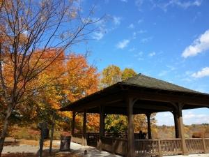 Baringer Hill at Cherokee Park